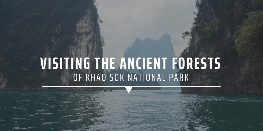 visiting Khao Sok National Park