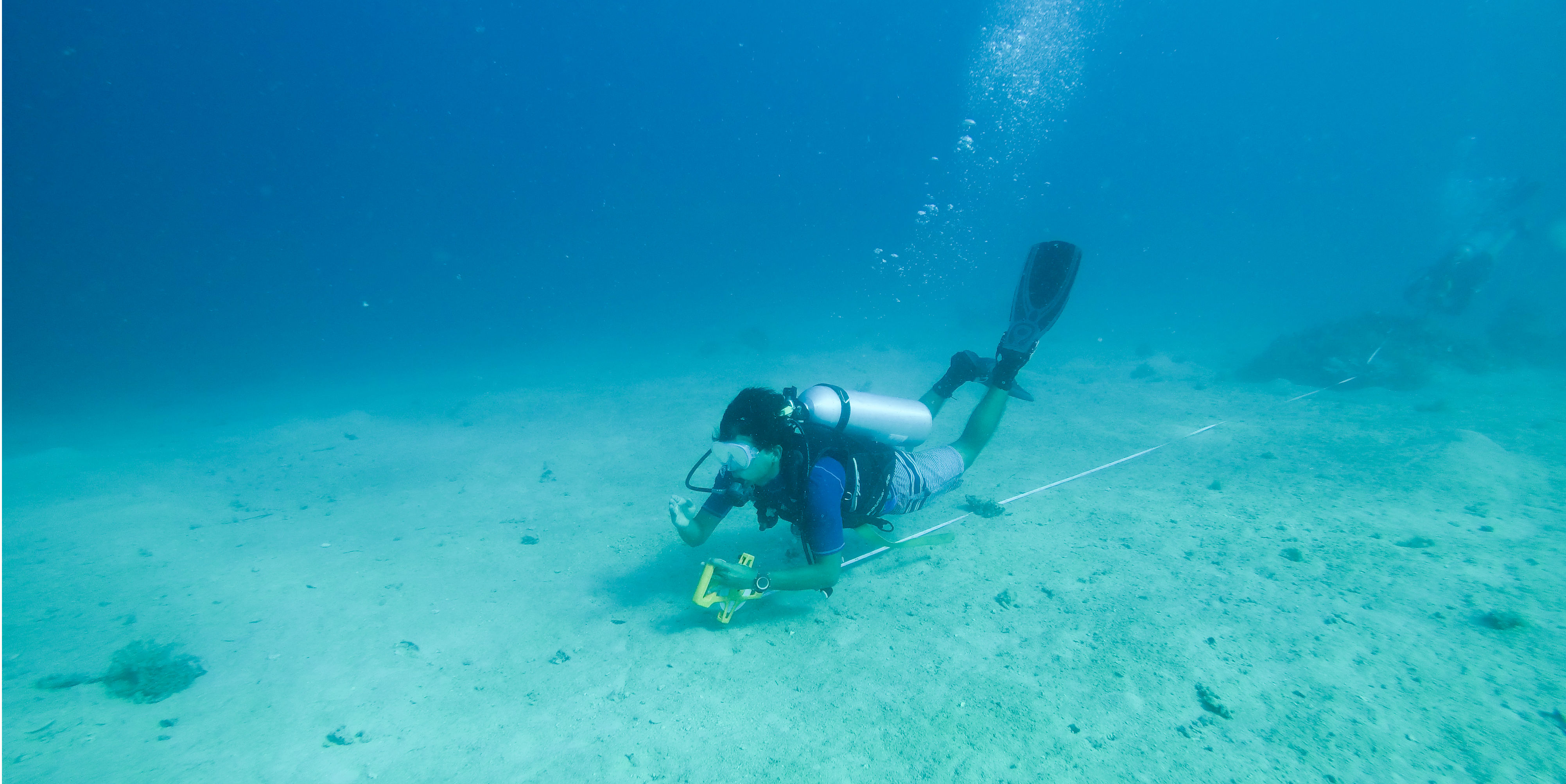 Fiji diving opportunities come with the promise of diverse underwater kingdoms. Pictured: A GVI participant conducts marine conservation research in Calaqai