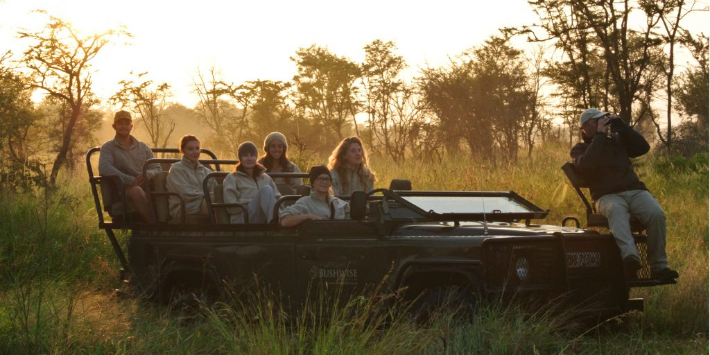 Join GVI's conservation internship to join us in making a positive impact and learn about wildlife conservation.