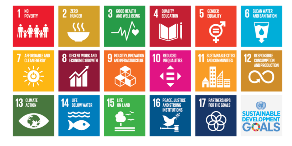 When you volunteer in Thailand you will receive training on the United Nations Sustainable Development Goals.