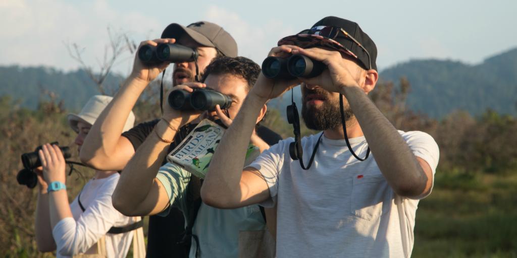 Volunteers using binoculars to survey birds in Thailand