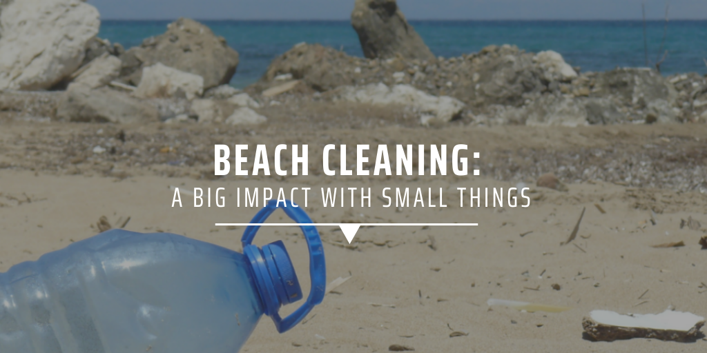 Beach cleaning: A big impact with small things.