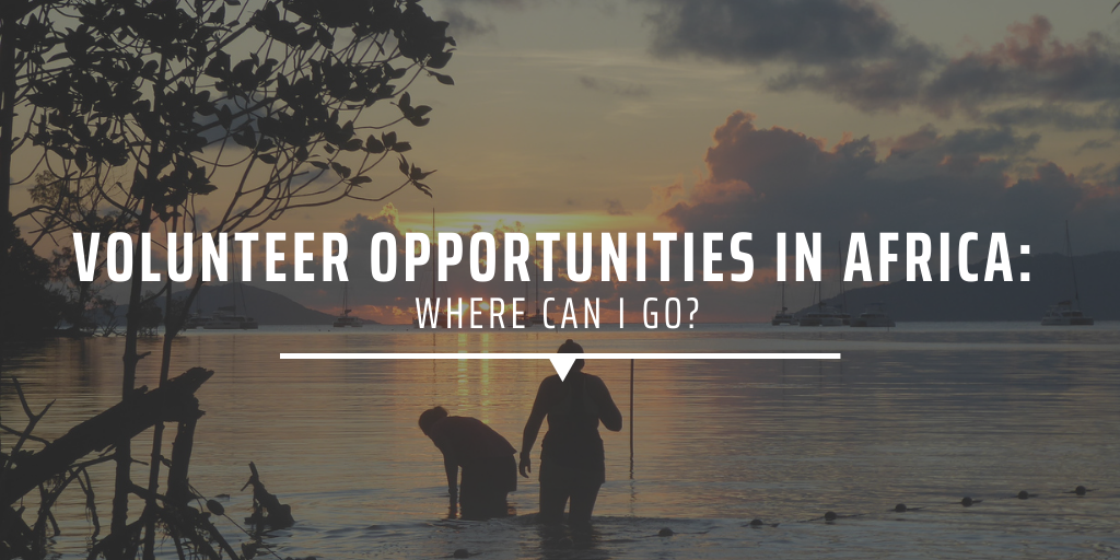 Volunteer opportunities in Africa: Where can I go?