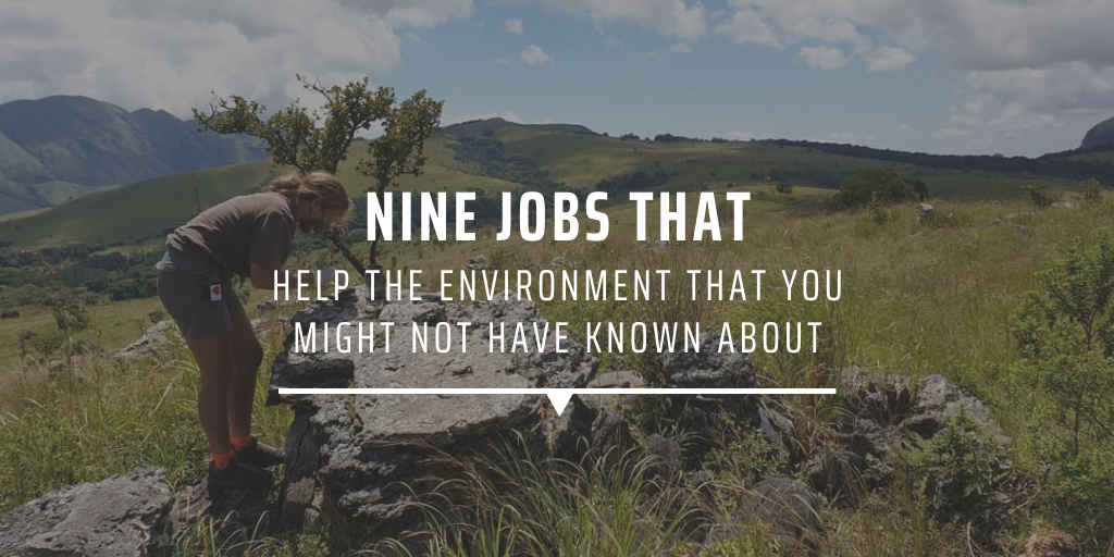 Nine jobs that help the environment that you might not have known about
