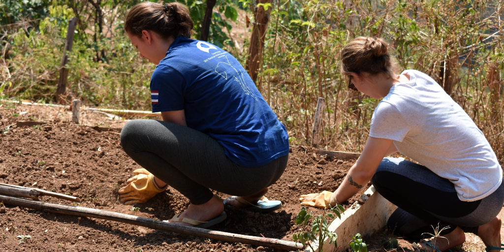 The GVI volunteers assist in the community garden project that aims to help restore the natural environment.