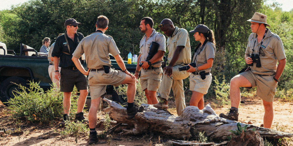 You can gain a field guide qualification with a GVI research internship.