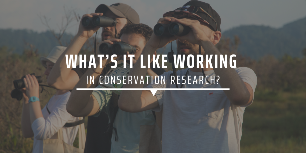 What's it like working in conservation research?