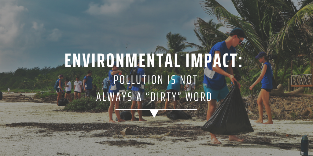 """Environmental impact Pollution is not always a """"dirty"""" word"""