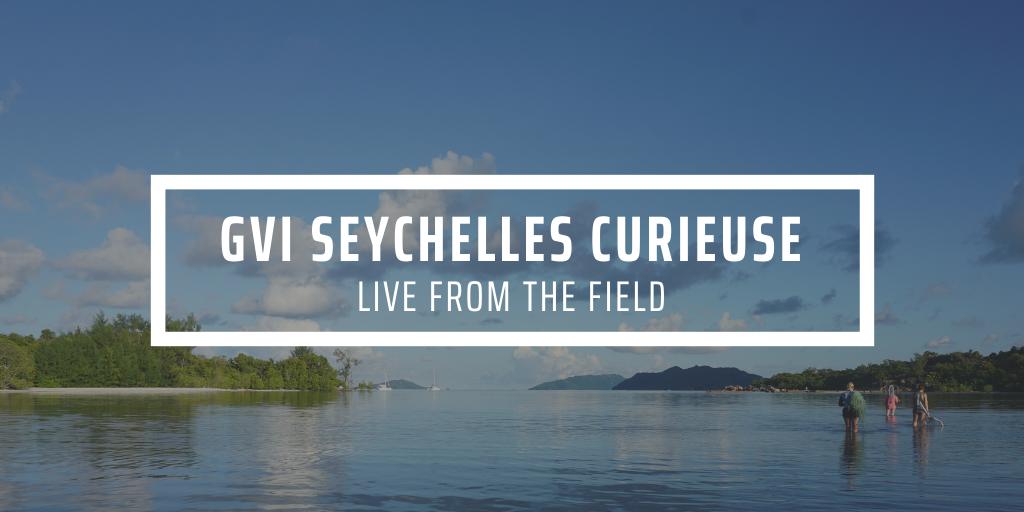 Background image of people volunteering in Seychelles